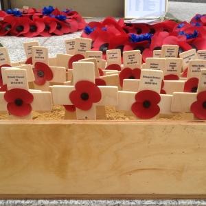 Somme Memorial Crosses